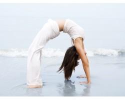 Hata Yoga (1)